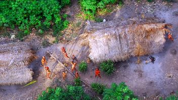 Members of an uncontacted Amazon Basin tribe and their dwellings are seen during a flight over the Brazilian state of Acre along the border with Peru in this May 2008 photo distributed by Survival International. Survival International estimates that there are over 100 uncontacted tribes worldwide, and says that uncontacted tribes in the region are under increasing threat from illegal logging over the border in Peru. REUTERS/Funai-Frente de Protecao Etno-Ambiental Envira/Handout (BRAZIL). FOR EDI