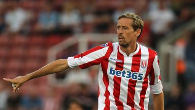 Crouch 'valuable' for Stoke