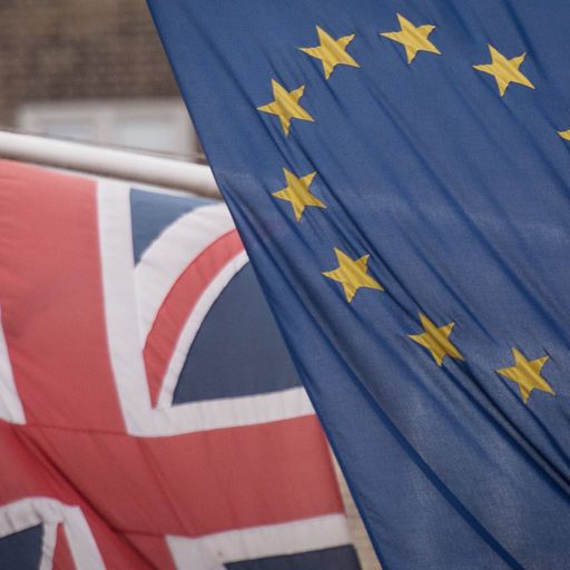 What is in May's Brexit plan?