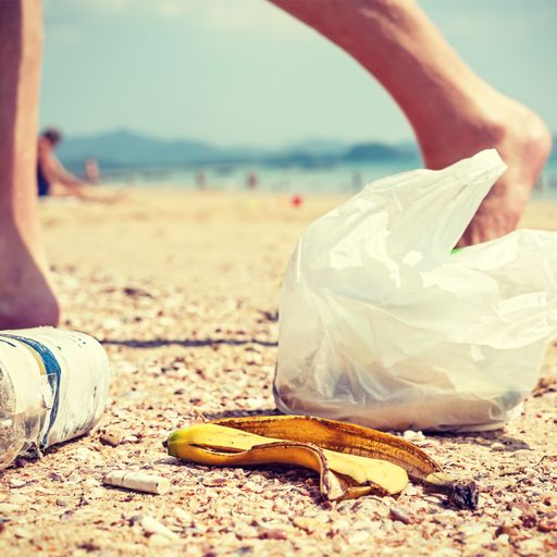 Are you eco-savvy or totally rubbish?