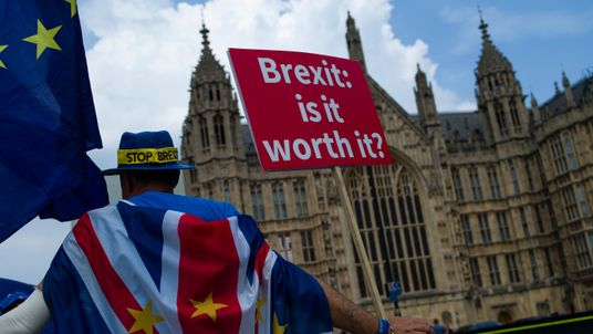 A protester against Brexit outside the Houses of Parliament