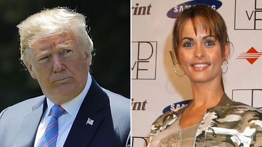Karen McDougal claimed she had a year-long affair with Donald Trump