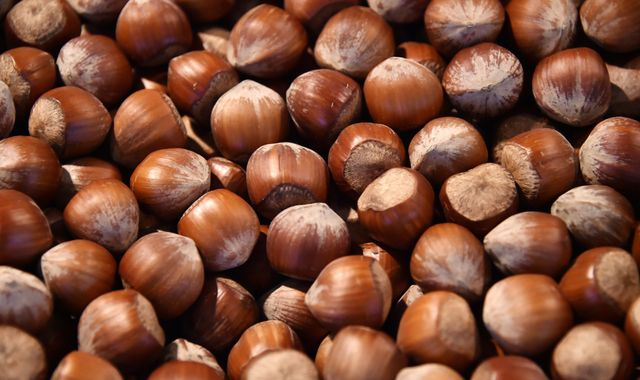 Study says nuts may boost male fertility