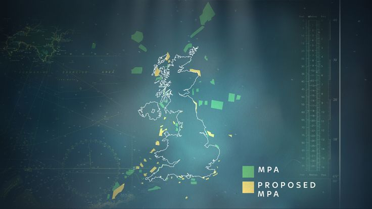 Marine protected areas around the UK