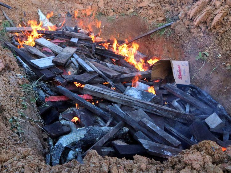 अजीब-था-लोगों-का-ये-बदला-मारे-गये-२९२-मगरमच्छ