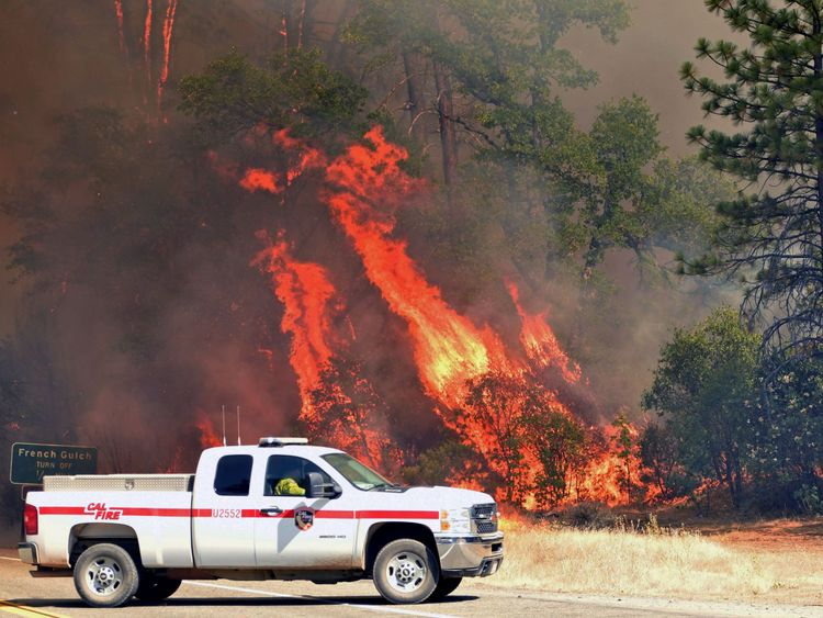 Flames engulf trees near a road during the Carr fire in Redding