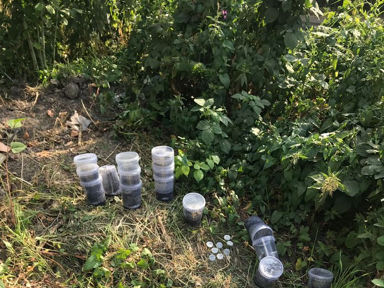 Two of the pots were run over by a vehicle. Pic RSPCA