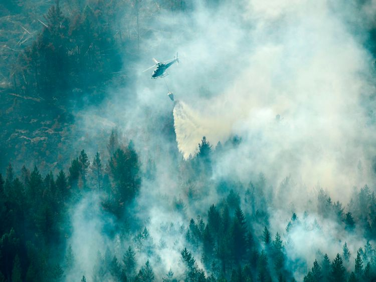 More than 50 wildfires are being tackled in Sweden