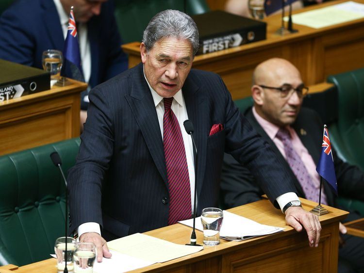 Acting Prime Minister Winston Peters is against the vegan burgers being sold on the national carrier