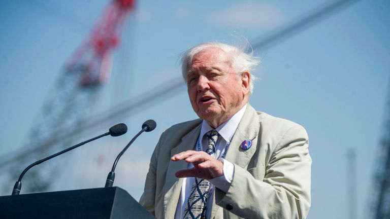 "Sir David said he was ""honoured"" to have the ship named after him"