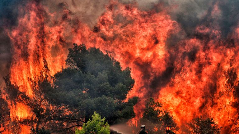 Firefighters try to extinguish flames during a wildfire at the village of Kineta, near Athens, on July 24, 2018