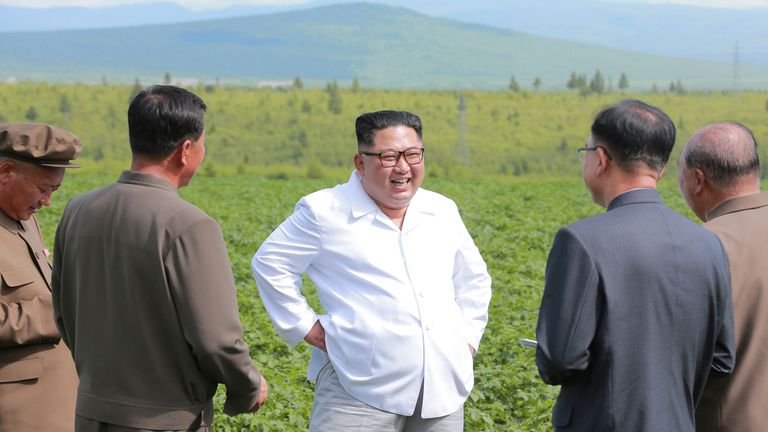 Mr Kim laughed as he inspected the potato farm