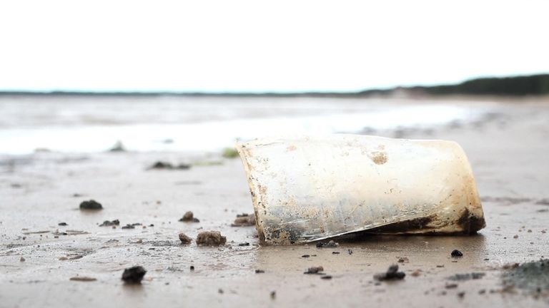 Plastic washed ashore onto the beach at Sestroretsk