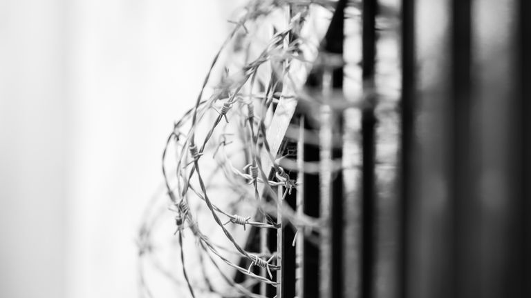 Generic picture of barbed wire