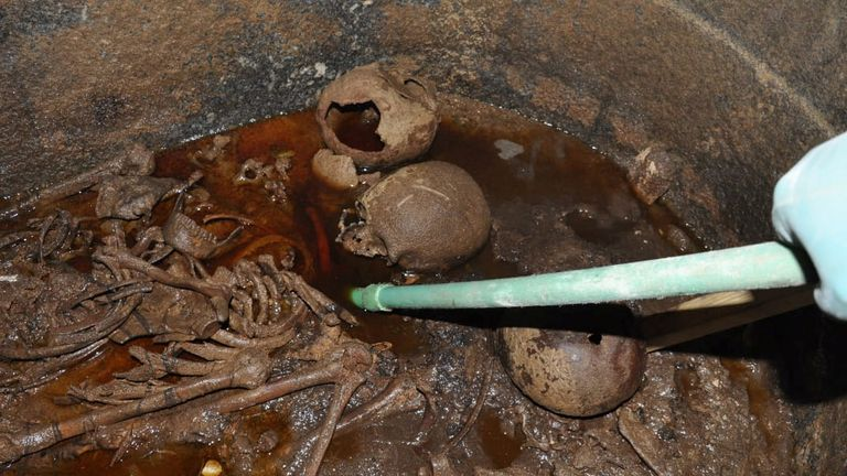 The skeletons of family mummies are discovered in the giant sarcophagus