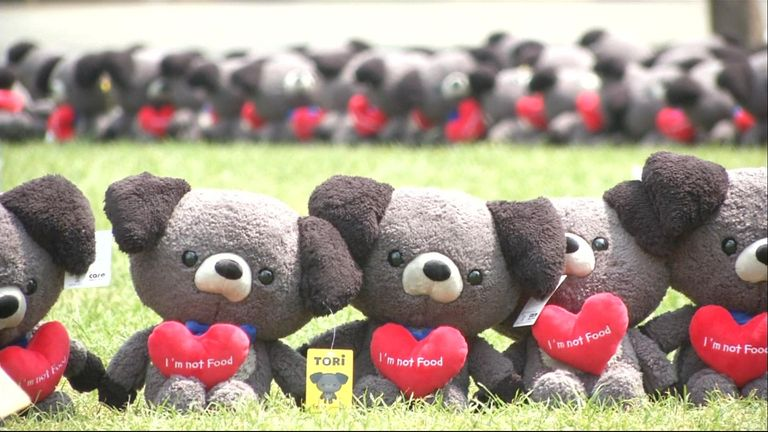 Soft toys have been made to spread the message