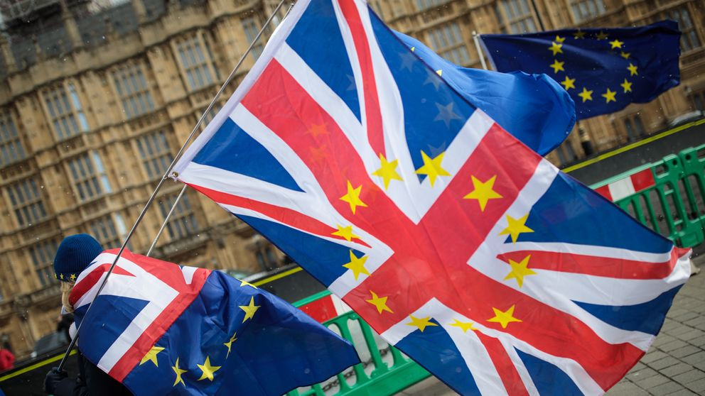 Government to issue no-deal Brexit advice