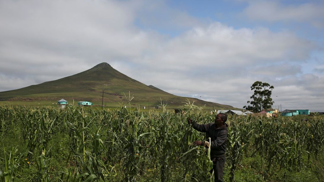 South Africa's Land Reform Is Different From Zimbabwe's