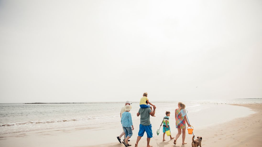 Rear view of a family walking along the beach with their dog while on holiday