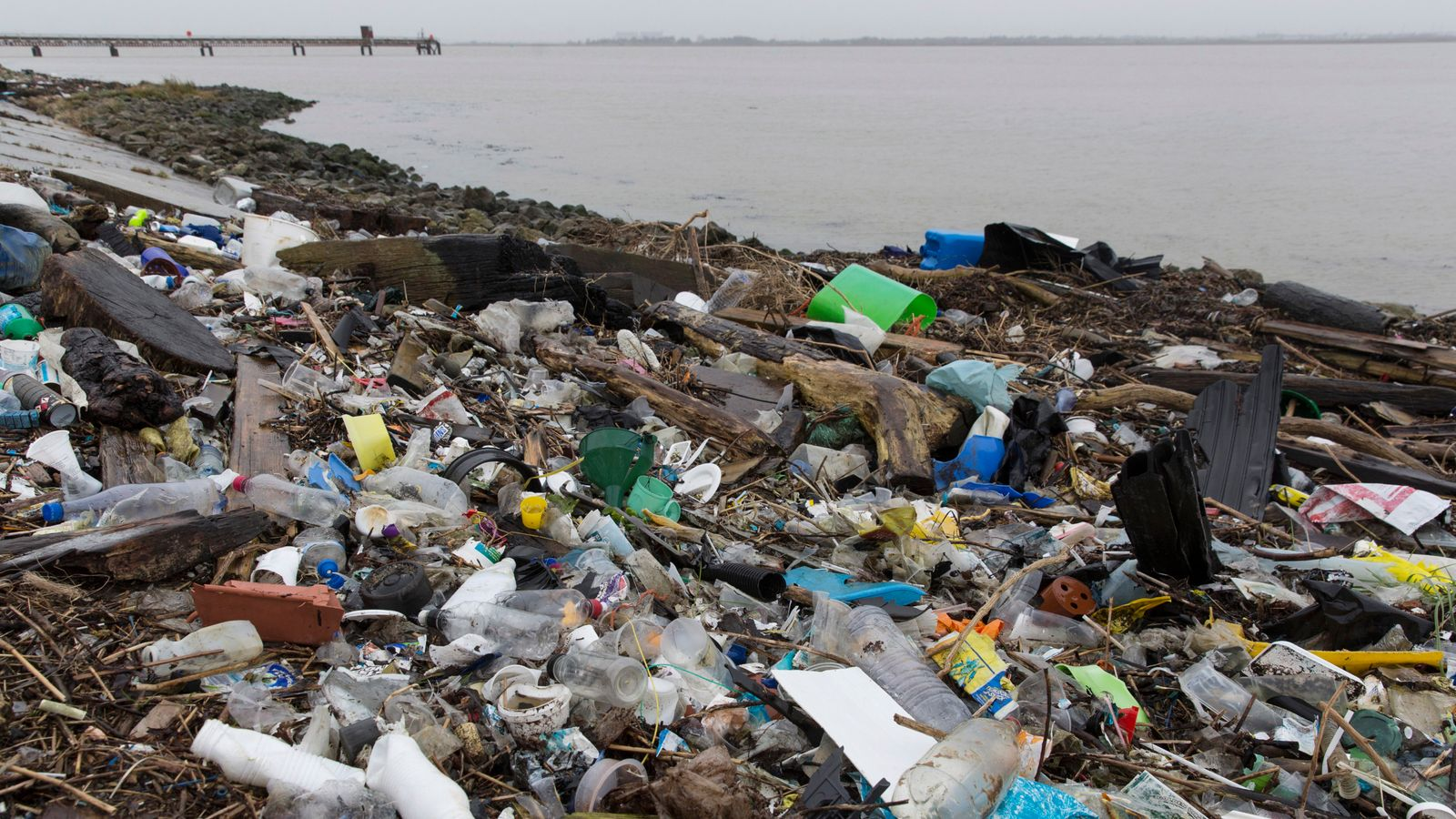 创纪录的162,000人对塑料减量有发言权