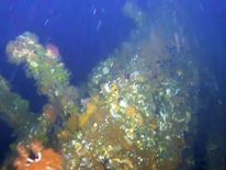 Stern of USS Abner Read discovered in Bering Sea