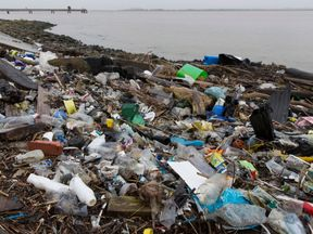 Plastics and other detritus line the shore of the Thames Estuary on January 2, 2018 in Cliffe, Kent