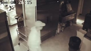 Cheese shop in Canada records intruder on CCTV