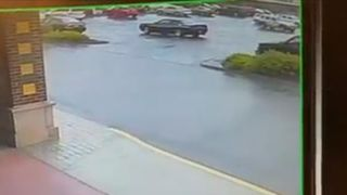 Bear tries to enter an off-licence in Connecticut