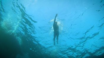 Endurance swimmer Lewis Pugh is swimming some 350-miles to raise awareness of ocean preservation.