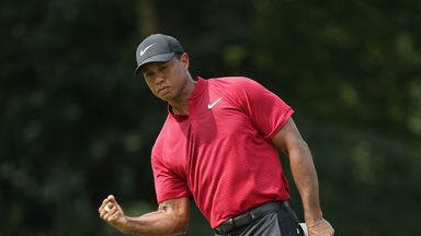 Tiger on Ryder Cup chances