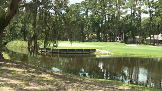 Woman killed by alligator while trying to save dog