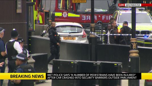 Officers arrest a man following the crash outside Parliament