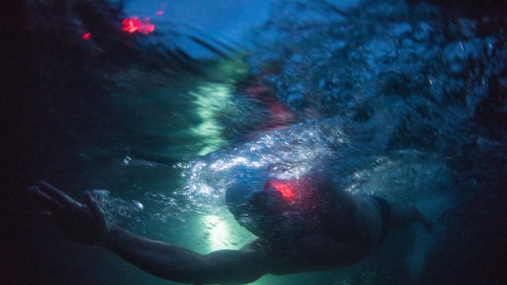 The endurance swimmer has had glowsticks attached to aid visibility