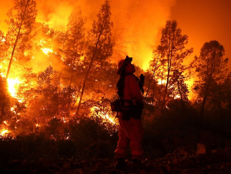 A firefighter monitors a back fire while battling the Medocino Complex fire near Lodoga, California