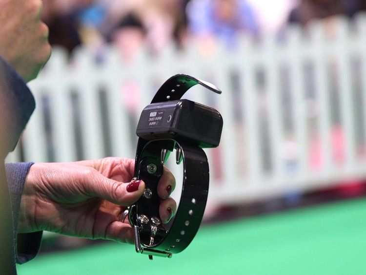 The collars can be used to deliver an electric shock to the animal