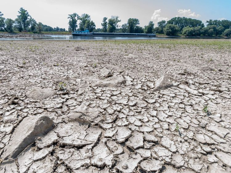 Parched land besides a low river Danube in Germany