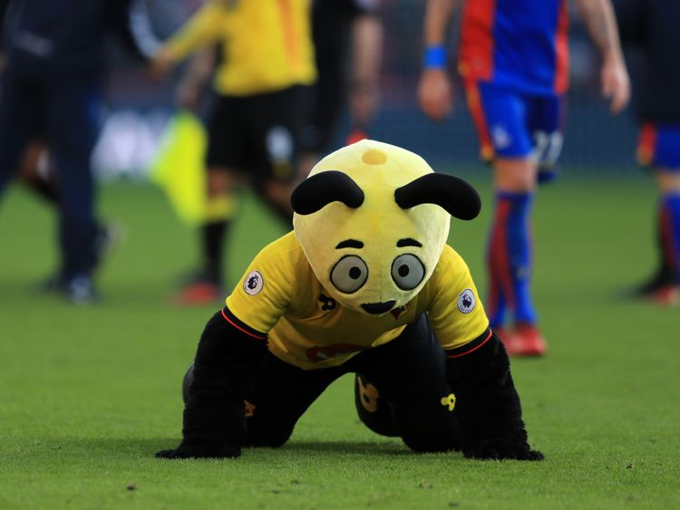 The Watford mascot mocking Wilfried Zaha in 2016