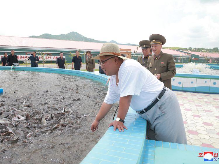 North Korean heatwave could be 'catastrophic'