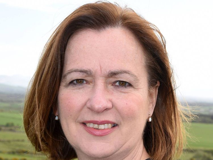 Plaid Cymru MP Liz Saville Roberts has said criminals are abusing the system
