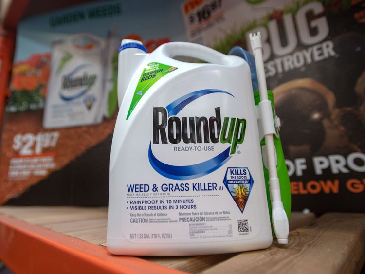 Monsanto is found guilty in Roundup trial