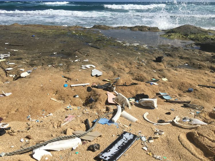Plastics washed up on the shore in Hawaii