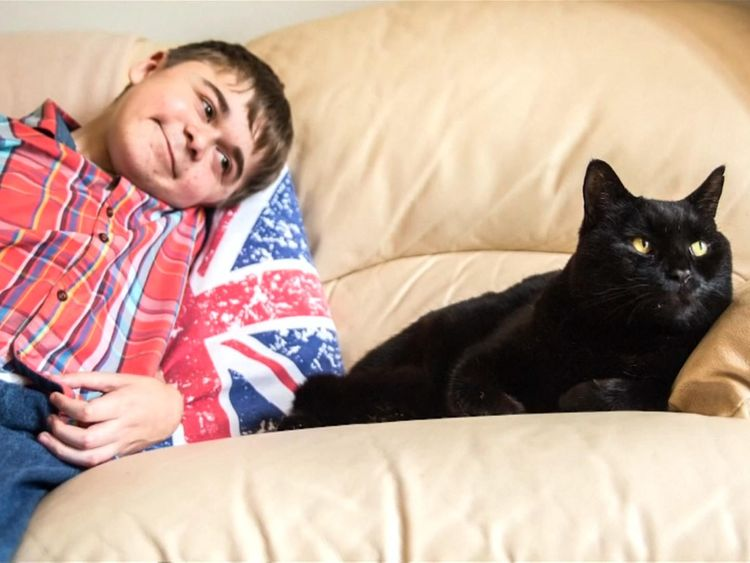 "Salem was awarded for being ""best friends"" with Jared, 15, who has muscular dystrophy. Pic: Cats Protection"