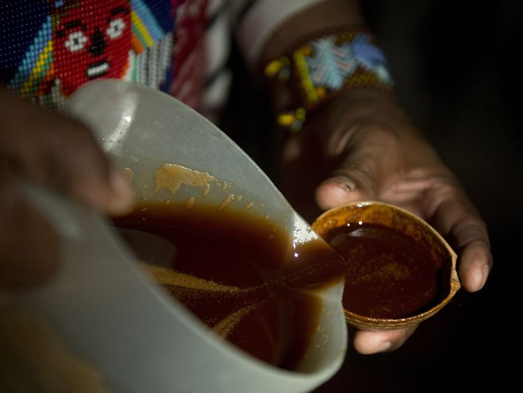 Yage, also known as ayahuasca, causes hallucination. File pic