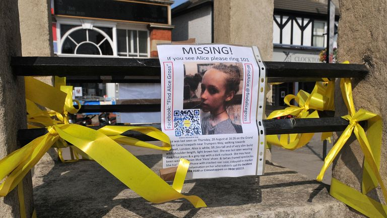 Alice Gross went missing in August 2014