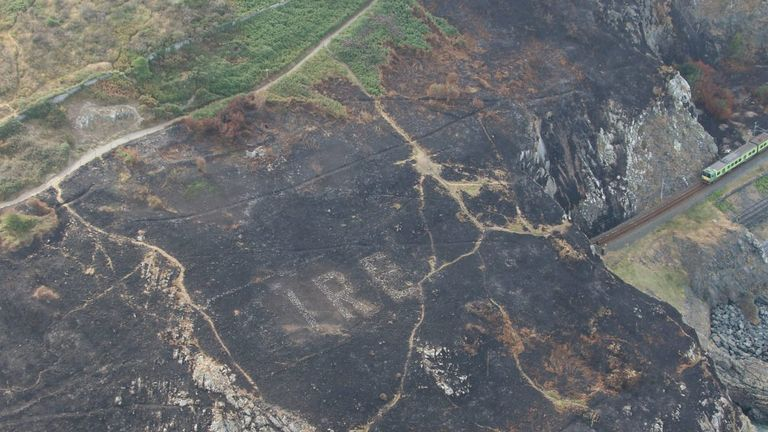 The huge Eire sign had been hidden by thick undergrowth. Pic: Irish Air Corps