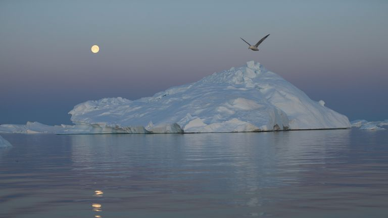 ILULISSAT, GREENLAND - JULY 23: A full moon is seen over an iceberg that broke off from the Jakobshavn Glacier on July 23, 2013 in Ilulissat, Greenland. As the sea levels around the globe rise, researchers affilitated with the National Science Foundation and other organizations are studying the phenomena of the melting glaciers and its long-term ramifications. The warmer temperatures that have had an effect on the glaciers in Greenland also have altered the ways in which the local populace farm,