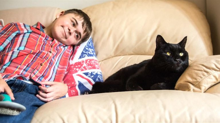 """Salem was awarded for being """"best friends"""" with Jared, 15, who has muscular dystrophy. Pic: Cats Protection"""