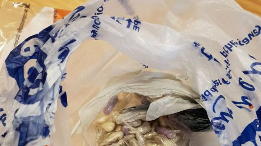 The cat was found 'curled up' next to the bag of drugs