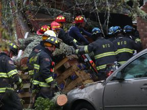 Firefighters try to gain access to 3 people in a home that a large tree fell on after Hurricane Florence hit the area, on September 14, 2018 in Wilmington, North Carolina
