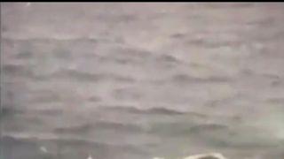 Sailor Abhilash Tomy  found by Indian Navy